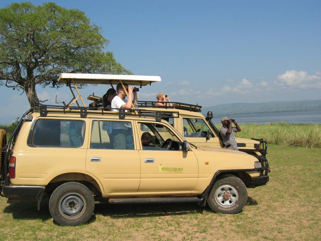 on safari with escape tours and safaris