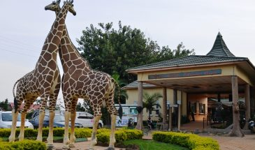 1 Day Entebbe Tour 1